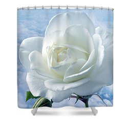 Heavenly White Rose. Shower Curtain