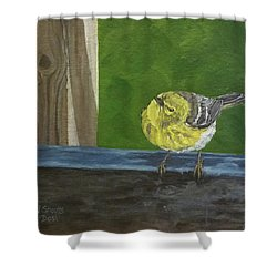 Hello Shower Curtain by Wendy Shoults