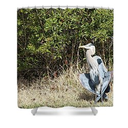Shower Curtain featuring the photograph Henry The Heron by Benanne Stiens
