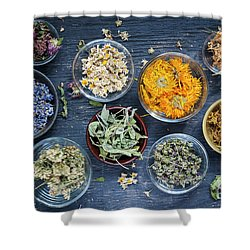 Shower Curtain featuring the photograph Herbs by Elena Elisseeva