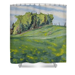 Hills Forest And Dadelions  Shower Curtain by Francois Fournier