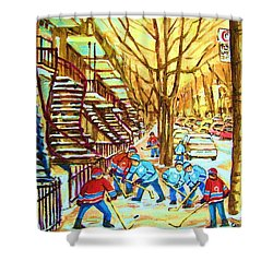 Hockey Game Near Winding Staircases Shower Curtain by Carole Spandau
