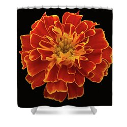 Home Grown Marigold Shower Curtain