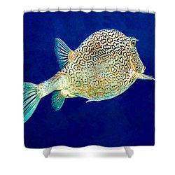 Honeycomb Cowfish Shower Curtain