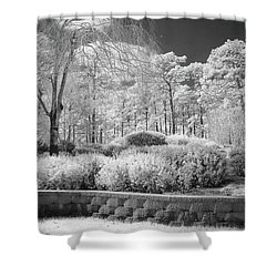 White Forrest Shower Curtain by Denis Lemay