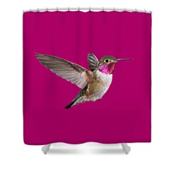 Hummer All Items Shower Curtain