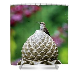Hummingbird On Garden Water Fountain Shower Curtain by David Gn