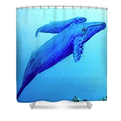 Humpback Mother Whale And Calf #21 Shower Curtain by Donald k Hall