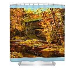 Hutchins Bridge Shower Curtain by John Selmer Sr