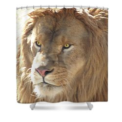 I Am .. The Lion Shower Curtain