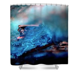 Shower Curtain featuring the photograph Ice Art 6 by Rico Besserdich