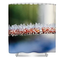 Ice Crystals Shower Curtain by Tiffany Erdman