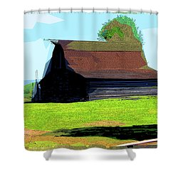 If Buildings Could Talk Shower Curtain