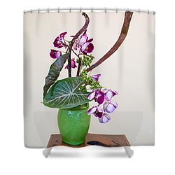 Ikebana Art Shower Curtain