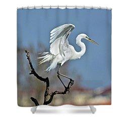 I'll Fly Away Shower Curtain by Carol Bradley