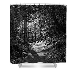 Shower Curtain featuring the photograph In The Forest by Cendrine Marrouat