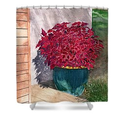 Shower Curtain featuring the painting In The Morning by Melly Terpening