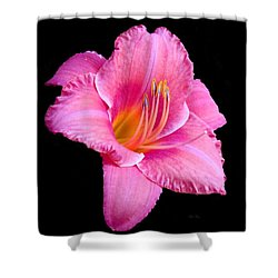 In The Pink Shower Curtain