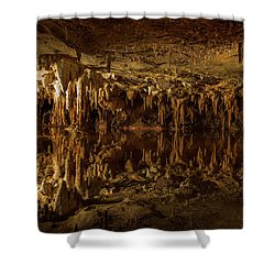In The Upside-down Shower Curtain