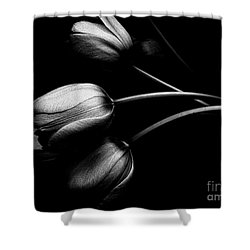 Incognito Shower Curtain by Elfriede Fulda
