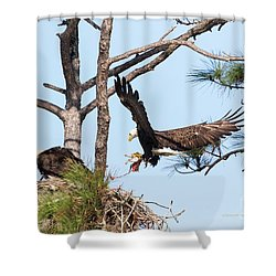 Shower Curtain featuring the photograph Incoming Food by Deborah Benoit