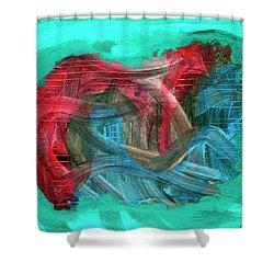 Inner Turmoil  Shower Curtain