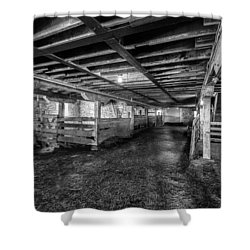 Inside The Barn Shower Curtain by Jay Stockhaus