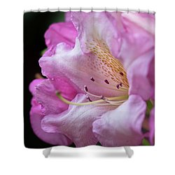 Invitation - Shower Curtain
