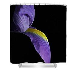 Iris Shower Curtain by Elsa Marie Santoro
