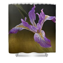 Shower Curtain featuring the photograph Iris by Inge Riis McDonald