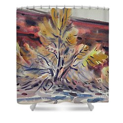 Ironwood Shower Curtain by Donald Maier
