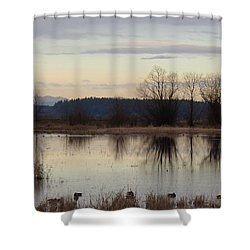 January Thaw 2 Shower Curtain