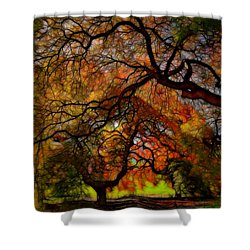 Japanese Maples 2 Shower Curtain