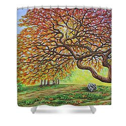 Japanese Maple Shower Curtain by Jane Girardot