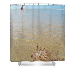 Jellyfish On Beach Shower Curtain by Hans Engbers