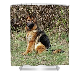 Shower Curtain featuring the photograph Jessy by Sandy Keeton