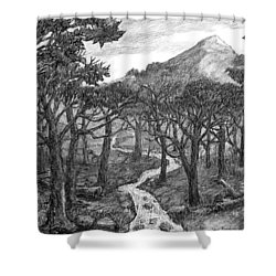 Jordan Creek Shower Curtain
