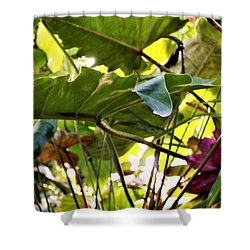 Shower Curtain featuring the photograph Jungle Jive by Mindy Newman