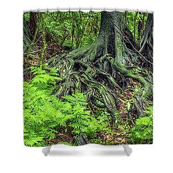 Shower Curtain featuring the photograph Jungle Roots by Les Cunliffe