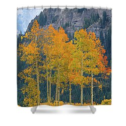 Just The Ten Of Us Shower Curtain