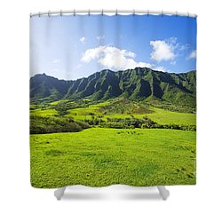 Kaaawa Valley And Kualoa Ranch Shower Curtain by Dana Edmunds - Printscapes