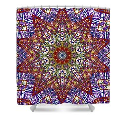 Kaleidoscope 414 Shower Curtain