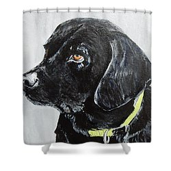 Keira Shower Curtain