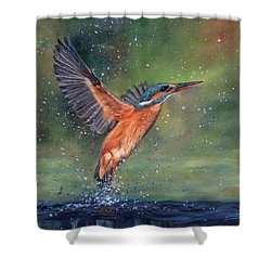 Shower Curtain featuring the painting Kingfisher by David Stribbling
