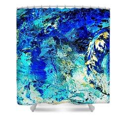 Koi Abstract Shower Curtain
