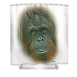 Lady Of The Forest Shower Curtain