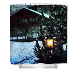 Lantern In The Woods Shower Curtain