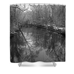 Late Winter In Philly Shower Curtain by Dorin Adrian Berbier