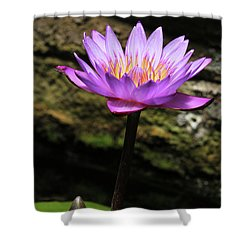 Lavender Water Lily #4 Shower Curtain