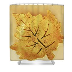 Leaf Plate2 Shower Curtain by Itzhak Richter